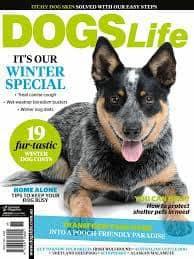 Dogs Life Magazine